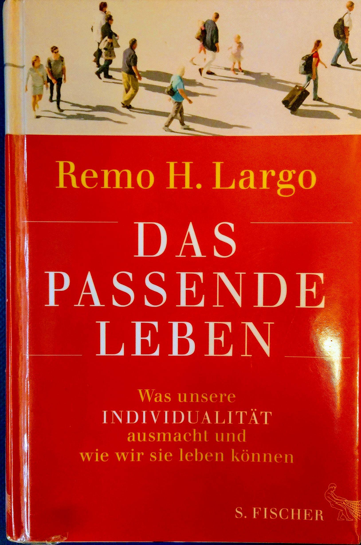 Ted-Talk Empfehlung von REMO H. LARGO
